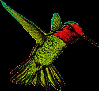 Googles Hummingbird Filter