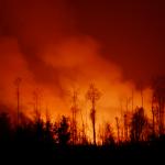 Feuer in Indonesien